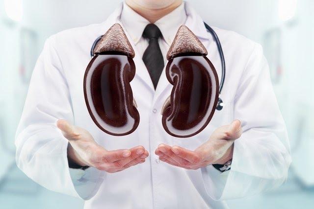Insuficiência Renal Aguda e Crônica: sintomas e tratamento